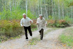 Portrait of senior couple walking in autumn forest stock photography