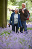Senior Couple Walking Through Bluebell Wood Royalty Free Stock Photos