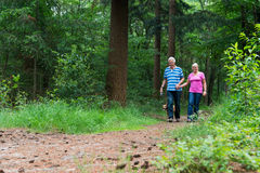 Senior couple walking with dog in nature royalty free stock images