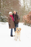 Senior Couple Walking Dog Through Snowy Woodland Royalty Free Stock Photography