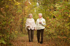 Senior couple walking on forest path. Happy senior couple holding hands together and walking on forest path Royalty Free Stock Photography