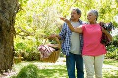 Senior couple walking in garden with basket Stock Photo