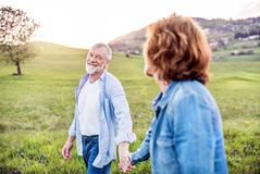Senior couple walking outside in spring nature, holding hands. Stock Images
