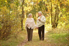 Senior couple walking in the park Stock Photography