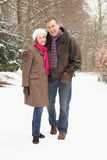 Senior Couple Walking Through Snowy Woodland Royalty Free Stock Photos