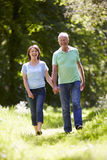 Senior Couple Walking In Summer Countryside Royalty Free Stock Image