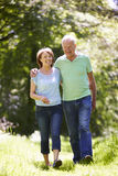 Senior Couple Walking In Summer Countryside Royalty Free Stock Photography