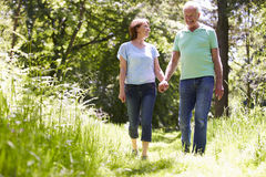 Senior Couple Walking In Summer Countryside Stock Photos