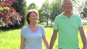 Senior Couple Walking Through Summer Field Together stock video