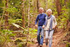 Senior couple walking together in a forest Stock Photos