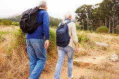 Senior couple walking together in a forest, close-up back view Stock Photo