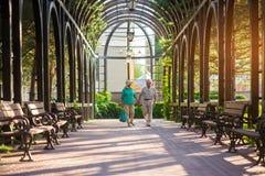 Senior couple walks along alley. Royalty Free Stock Photo