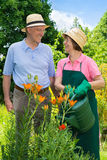 Senior Couple Watering Flowers Together in Garden. Royalty Free Stock Photos