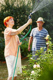 Senior couple watering their plants Stock Image