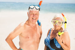 Senior couple wearing snorkel and diving goggles Stock Photography