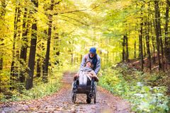 Senior couple with wheelchair in autumn forest. royalty free stock photos