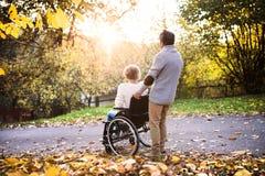 Senior couple in wheelchair in autumn nature. Stock Photos