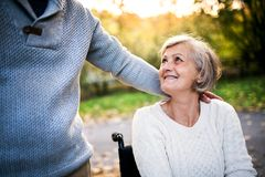 Senior couple in wheelchair in autumn nature. Stock Images