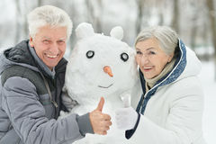 Senior couple in winter Stock Images