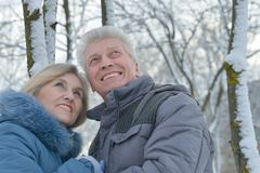 Senior couple in winter Stock Image