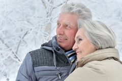 Senior couple in winter Royalty Free Stock Photos
