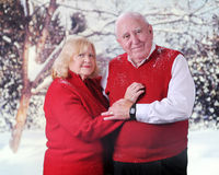 Senior Couple in Winter Royalty Free Stock Photography