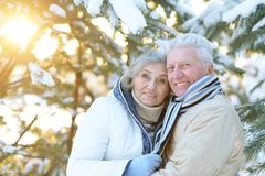 Senior couple at winter outdoors Stock Photo