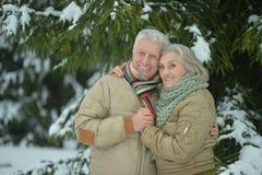 Senior couple at winter outdoors Stock Photos
