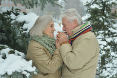 Senior couple at winter outdoors Royalty Free Stock Images