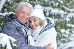 Senior couple in winter park Royalty Free Stock Photo