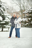 Senior couple in winter Stock Photos
