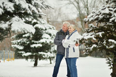 Senior couple in winter Royalty Free Stock Images