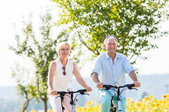 Senior Couple, Woman And Man, Riding Their Bikes Stock Photos