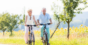 Senior Couple, Woman And Man, Riding Their Bikes Stock Photography