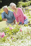 Senior couple working in garden. Laughing royalty free stock photo