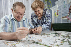 Senior couple working on a puzzle. At home Royalty Free Stock Photos