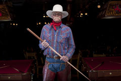 Senior Cowboy Standing in a Pool Hall Stock Photos