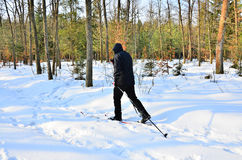 Senior cross-country skiing Royalty Free Stock Photos
