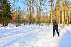 Senior cross-country skiing Royalty Free Stock Photos