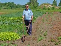 Senior cultivate garden 2 Royalty Free Stock Photo