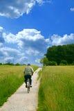 Senior cycling. An old man cycling trough grain fields stock image
