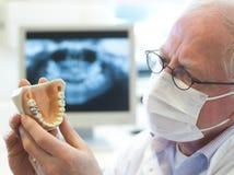 Senior Dentist Royalty Free Stock Image