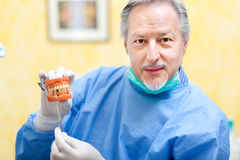 Senior Dentist showing a denture Stock Photos