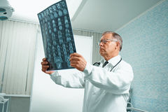 Senior doctor examines MRI image Stock Images