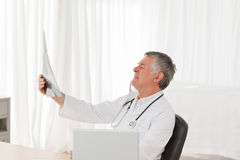 A senior doctor looking at the X-ray Royalty Free Stock Image