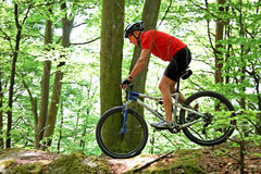 Senior driving  in the forest with mountain bike. Active senior driving  in the forest with mountain bike Royalty Free Stock Photos
