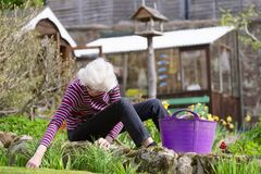 Senior elderly person active lifestyle in garden during bright colourful spring sunshine and summer temperature stock image