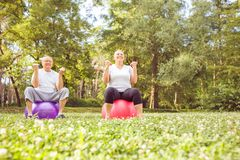 Senior exercise - Senior couple exercise together on fitness ball in park royalty free stock image