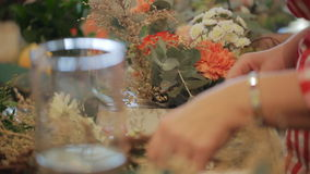 Senior expert of the master florist working with stock video