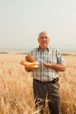 Senior farmer with bread royalty free stock photos